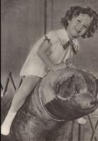 Shirley Temple auf ein Bär  15 x 10,5 cm
