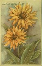 Picture postcard  14 x 9 cm