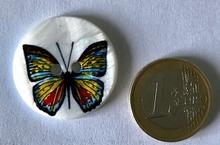 Parelmoerknoop vlinder  28 mm