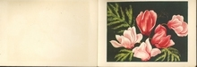 Bloemen 8,5 x 13,5 cm