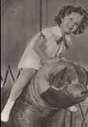 Shirley Tempel te beer 15 x 10,5 cm