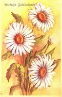 Bloemen 14 x 9 cm