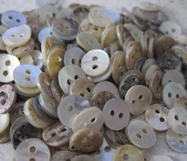 Button - Mother Of Pearl 8 mm