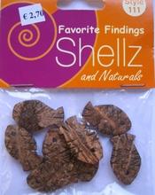 Favorite Findings - Shellz 111